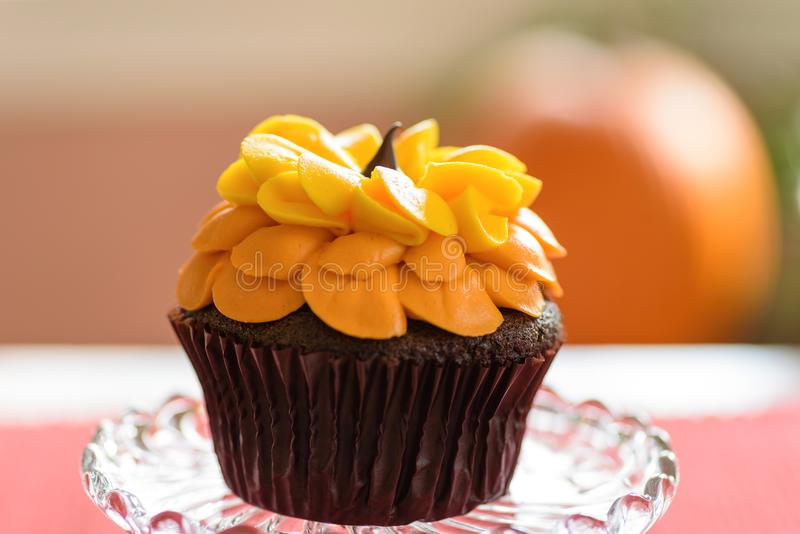 Single chocolate sunflower cupcake macro stock photos