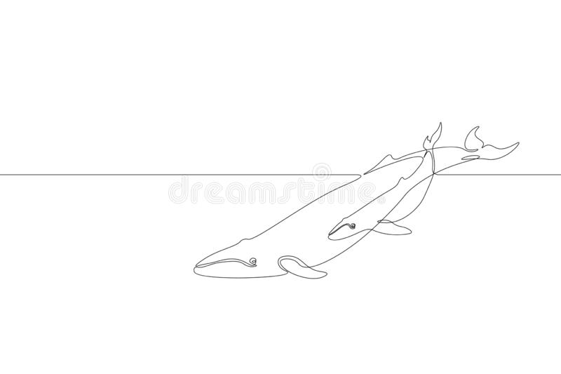 Single continuous line art marine whale parent baby silhouette. Nature ocean ecology life environment concept. Big tale royalty free illustration