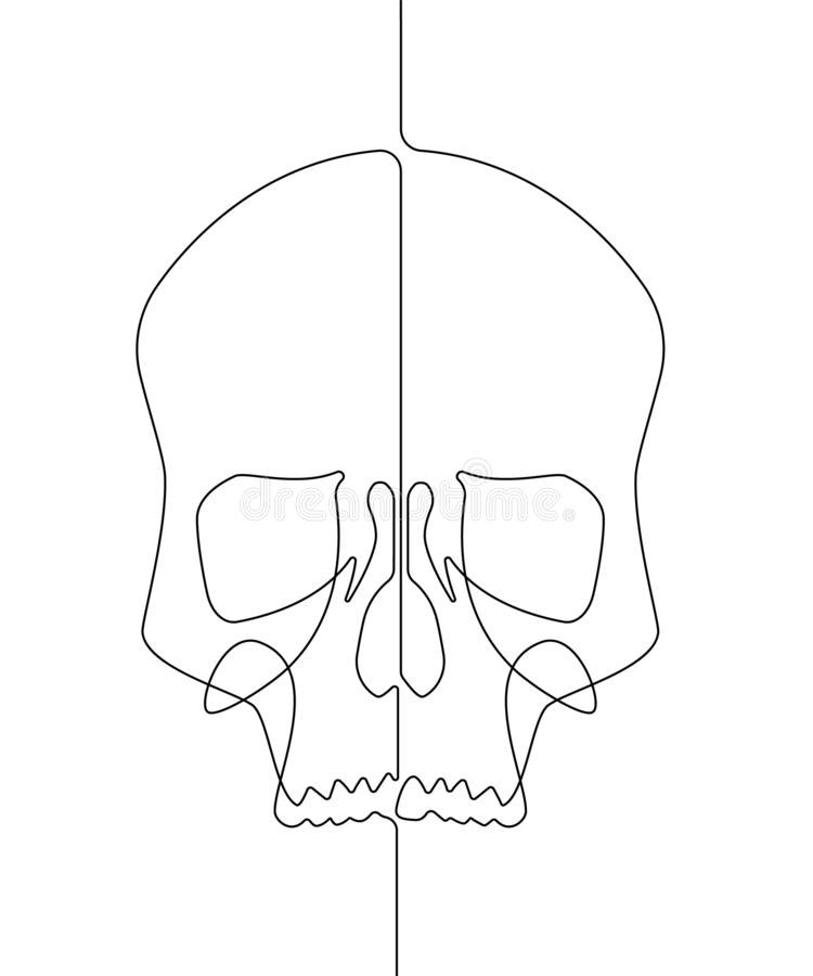 Human Skull Continuous Vector Line Art Illustration III. This is a single continuous vector line drawn out to represent the face of a human skull stock illustration