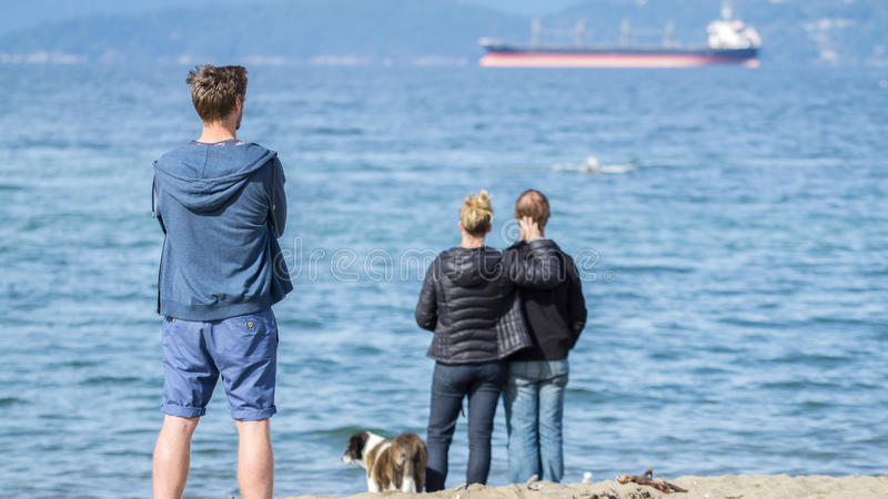 Single and couples watching ocean view stock image