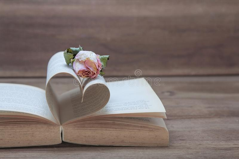 Single, dried pink rose on the old Heart shaped book, pink tones. stock photos