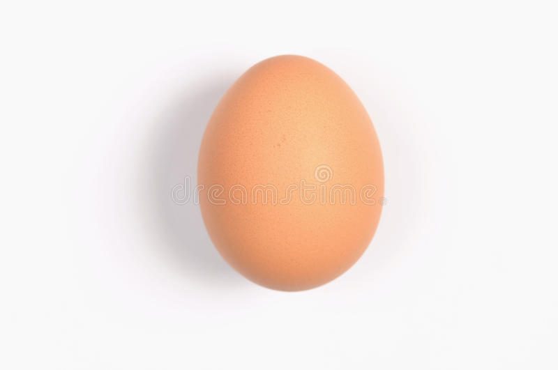 Single egg. A egg that capture using micro mode with white background royalty free stock photography