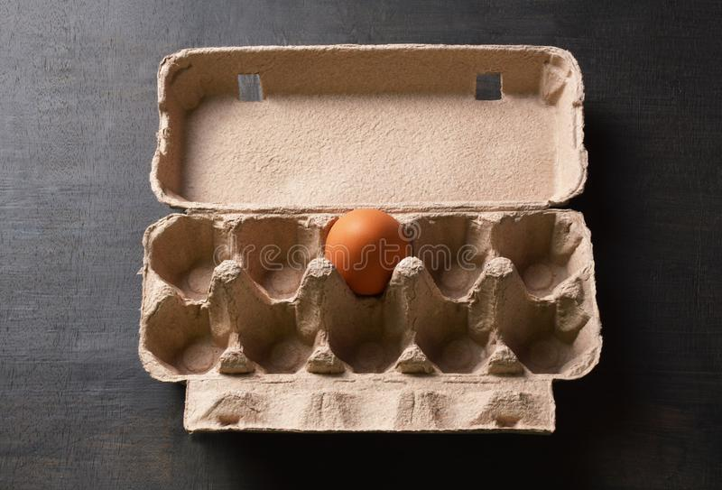 Single egg in a egg carton. Box royalty free stock photo