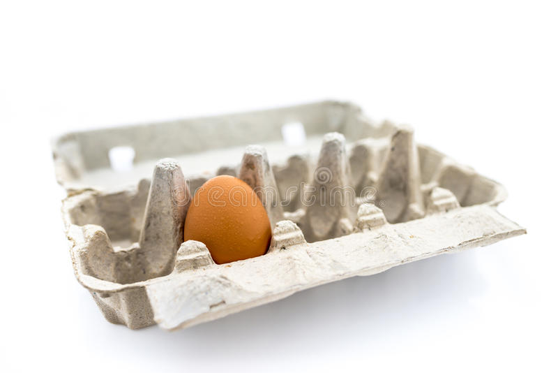 Single Egg. In a carton tray with white background. Concept of alone, lonely, empty nest, stress and security royalty free stock photography