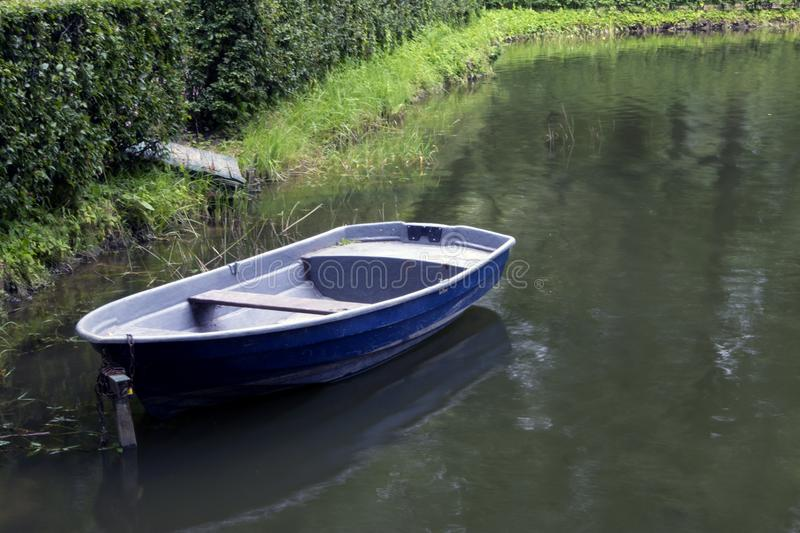 Single empty old blue boat moored in a green thickets. On a turbid pond royalty free stock photo