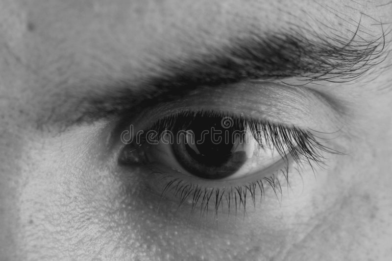 Download Single Eye stock image. Image of makeup, nose, person - 1414383
