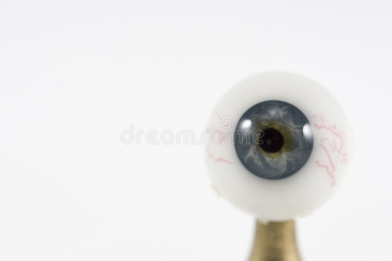 Single eye royalty free stock image