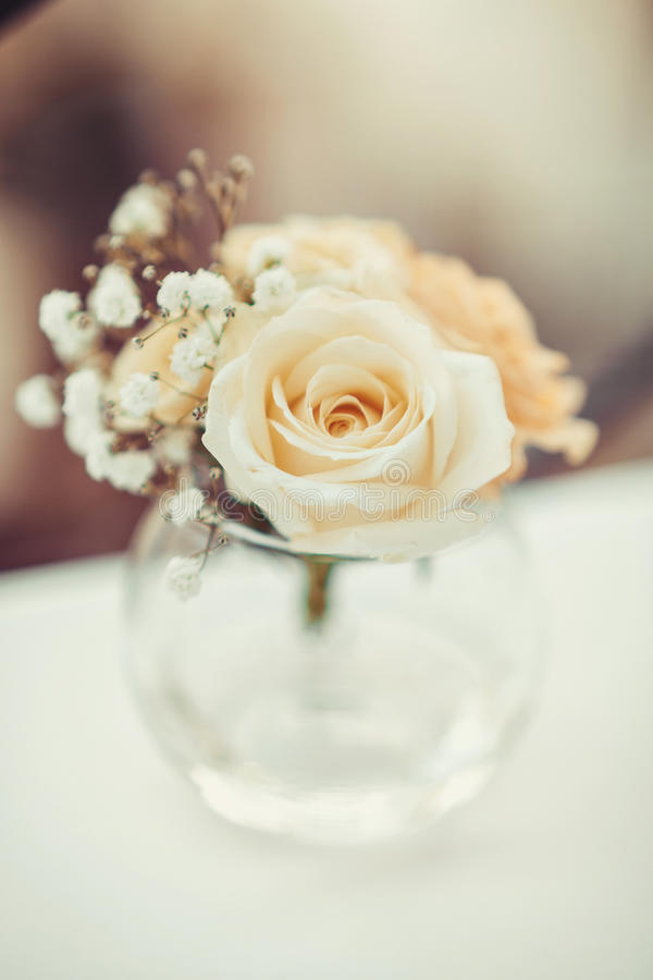Single flower of white rose in round glass vase on the table. Floral decor elements. Concept for romantic greeting card stock images
