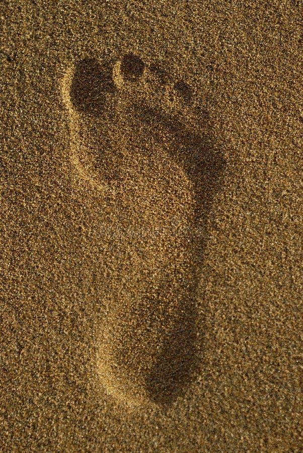 Single Footprint stock photos