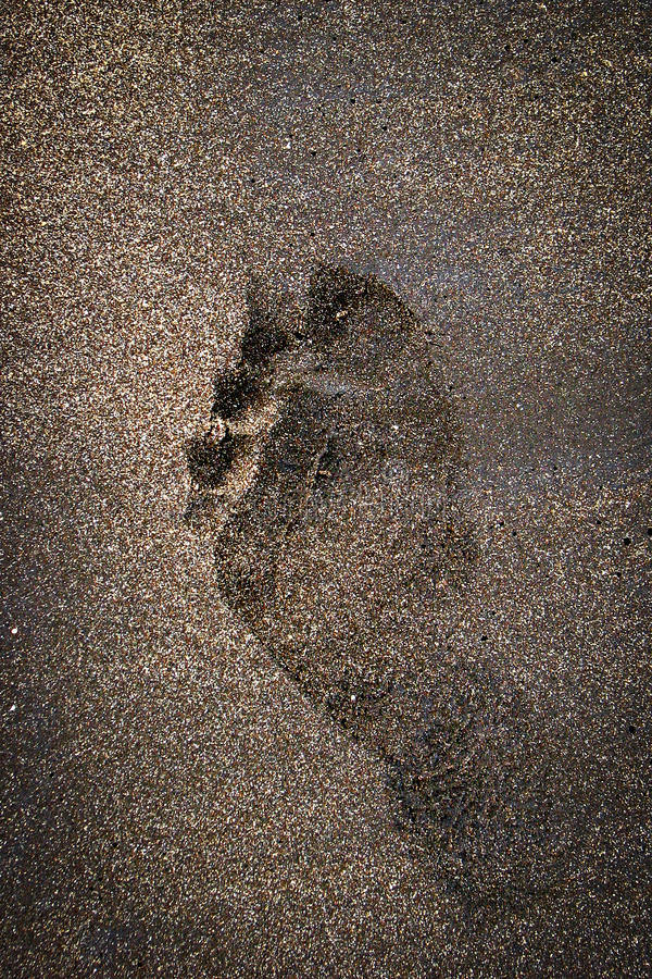 Download Single Footprint On Brown Beach Sand Stock Photo - Image: 36063552