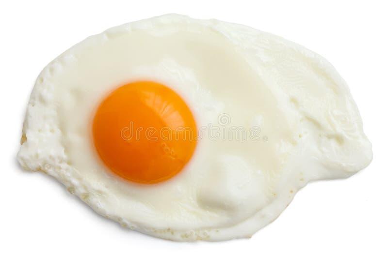 Single fried egg isolated royalty free stock photography