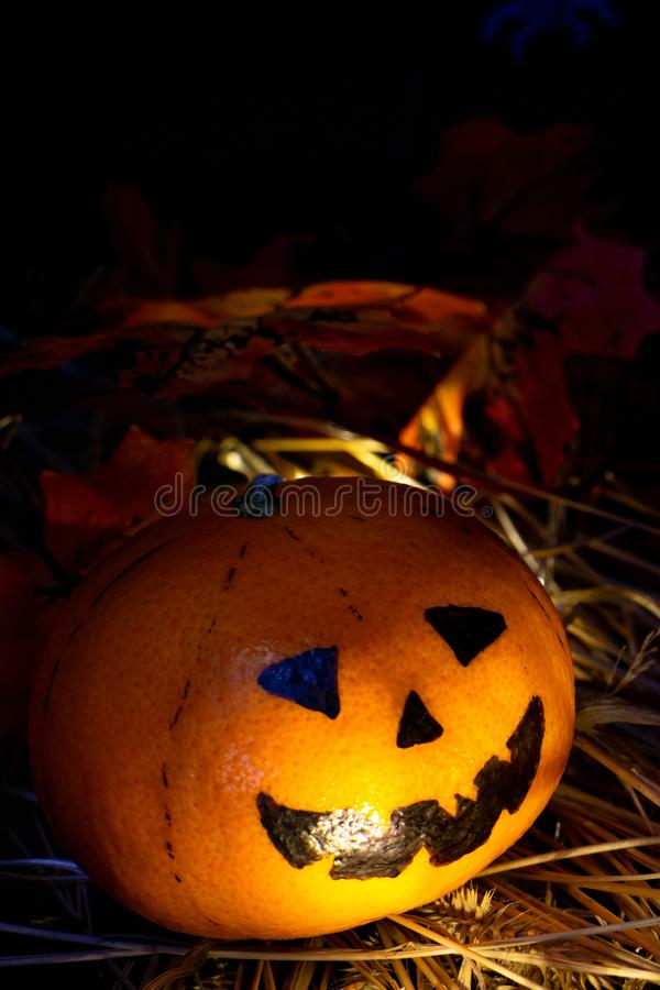 Single funny or angry pumpkin Jack o`Lantern head looks to the right, the light shines in his face. In the hay, against the background of autumn leaves on a royalty free stock photography
