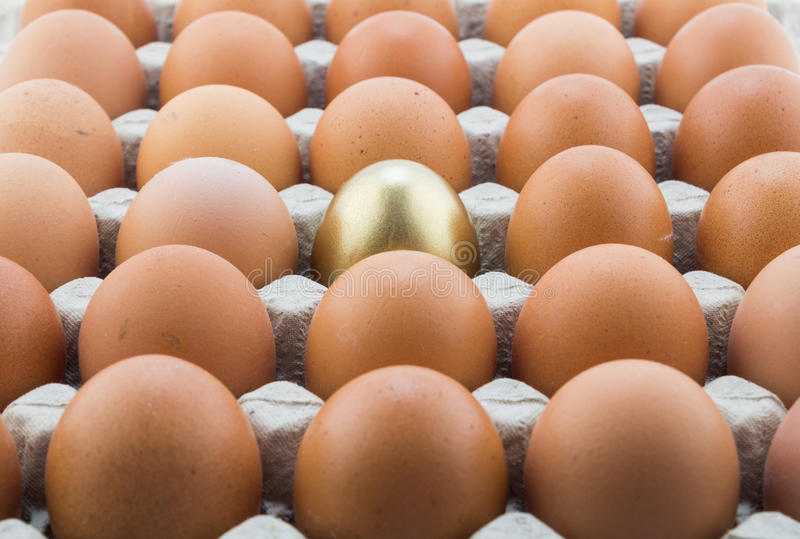Single gold egg and many normal hen eggs in carton. Abstract background with single golden egg and many normal hen eggs in carton royalty free stock photography