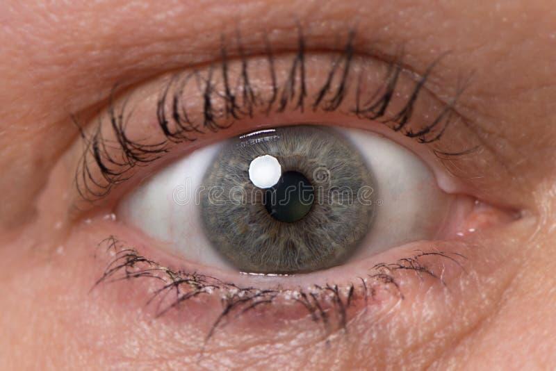 Single green blue eye with mascara. Older woman close up royalty free stock photos