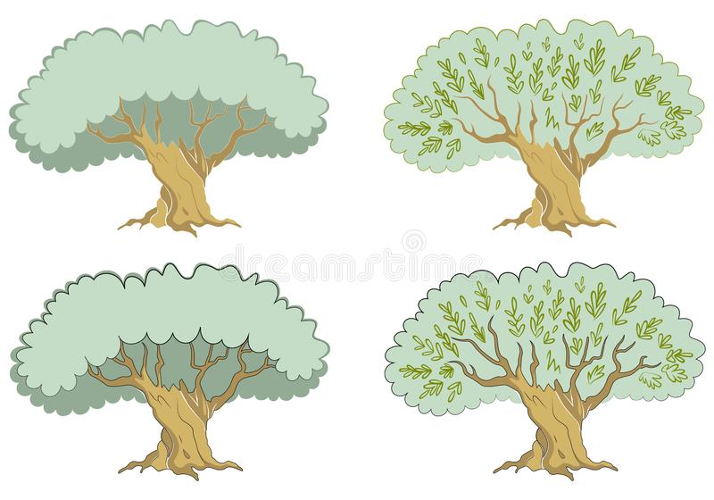 Single green olive tree with branches isolated on white background. Tree icon vector Illustration. Concept olive oil label or logotype for farmer shop or vector illustration