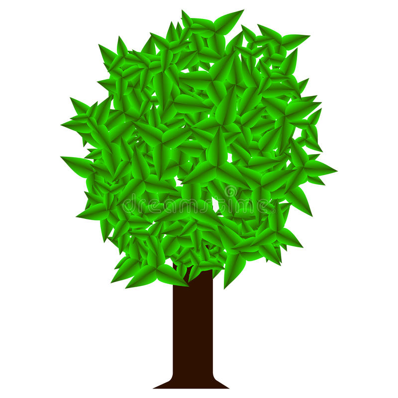 Single green tree on white background. royalty free illustration