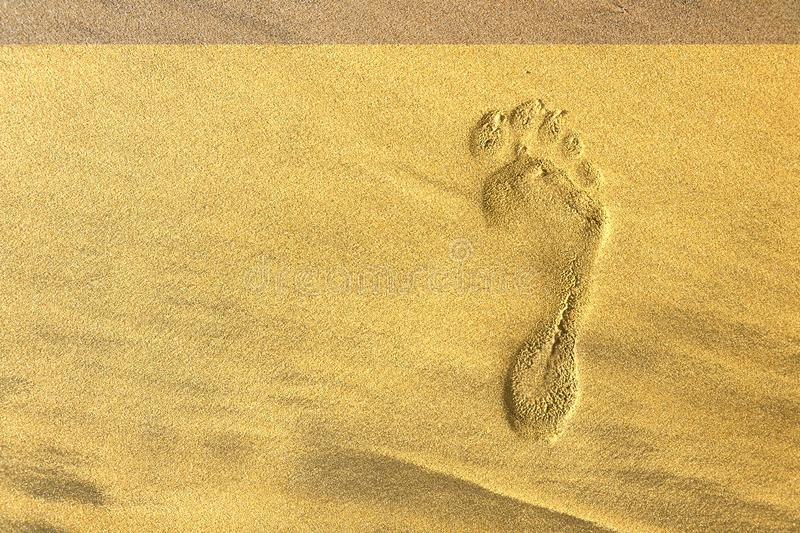Single human barefoot footprint of right foot in brown yellow sand beach background, summer vacation or climate change concept stock photography
