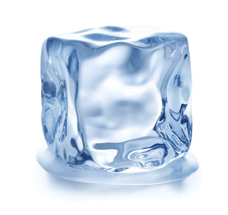 Single ice cube stock image