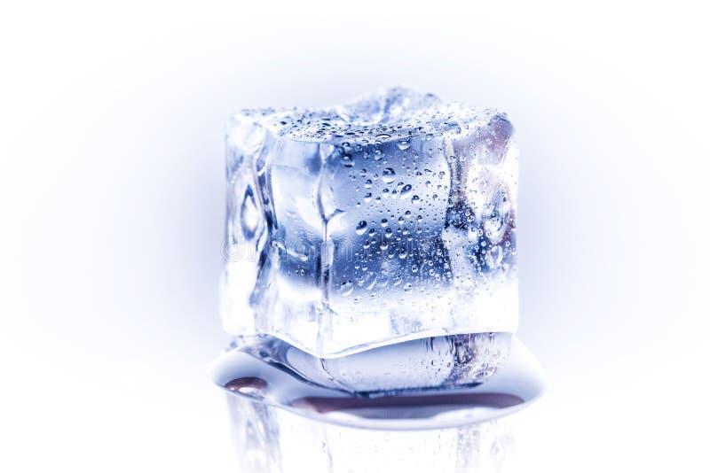 Single ice cube royalty free stock photography