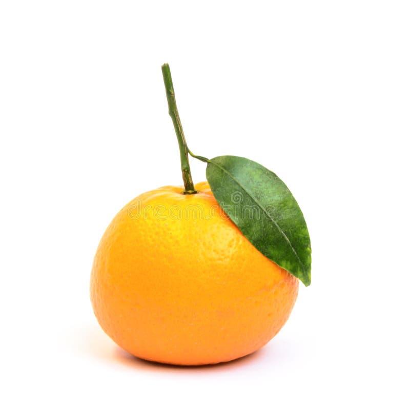 Single kinnow fruit isolated on white background stock photos