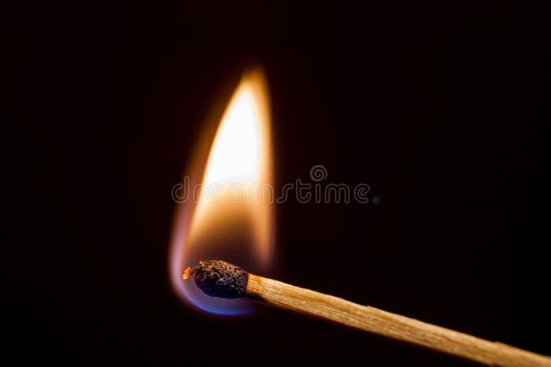 Lit match on a dark background royalty free stock photography