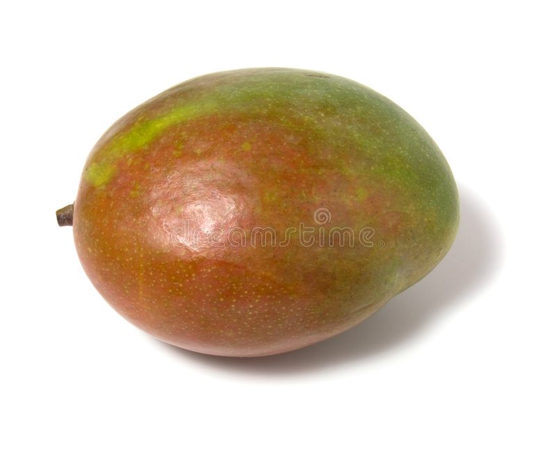 Download Single Mango Isolated On White Background Stock Image - Image: 7103961