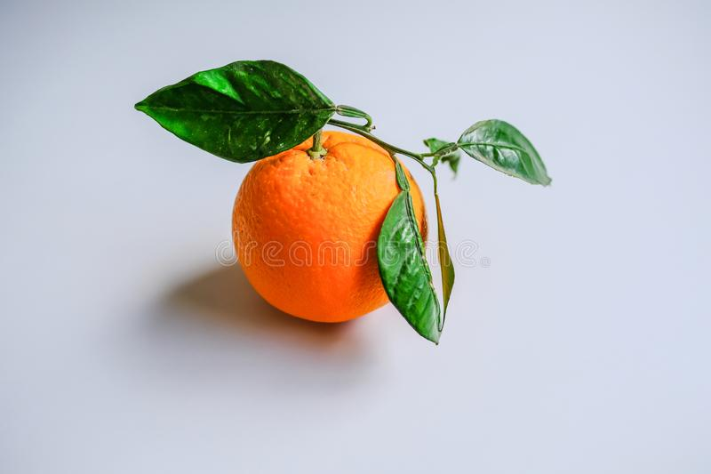 Single orange with green leaves on a plain light grey background. Natural single orange with green leaves on a plain light grey background royalty free stock image