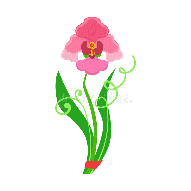 Single Orchid Flower Bouquet Tied With Red Ribbon, Flower Shop Decorative Plants Assortment Item Cartoon Vector royalty free illustration