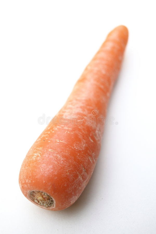 A single Organic Carrot royalty free stock image