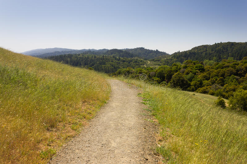 Download Single Path stock image. Image of road, wilderness, california - 33071627