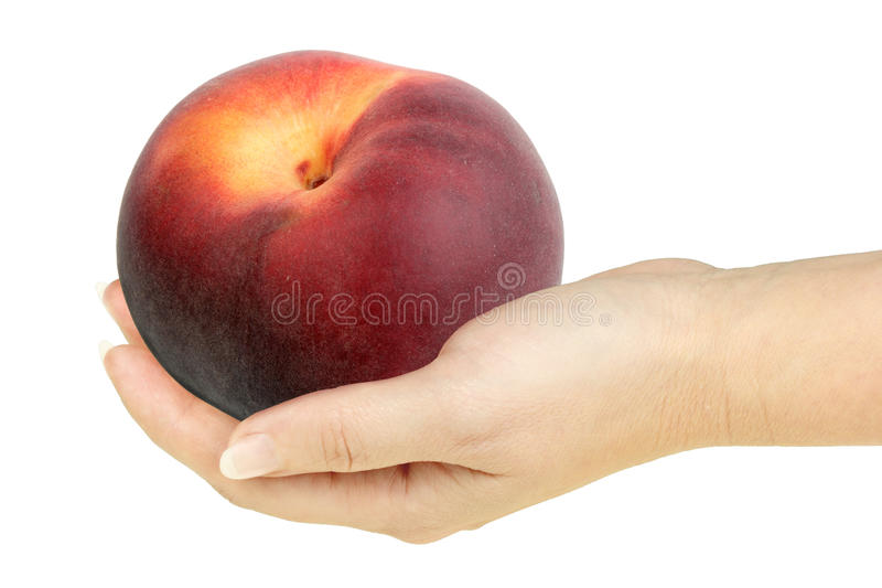Single peach in a hand of woman royalty free stock photo