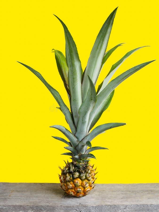 Single pineapple on wooden table stock photos