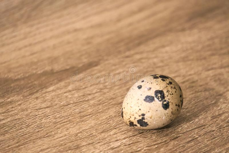 A single quail egg on a wooden board background. stock images