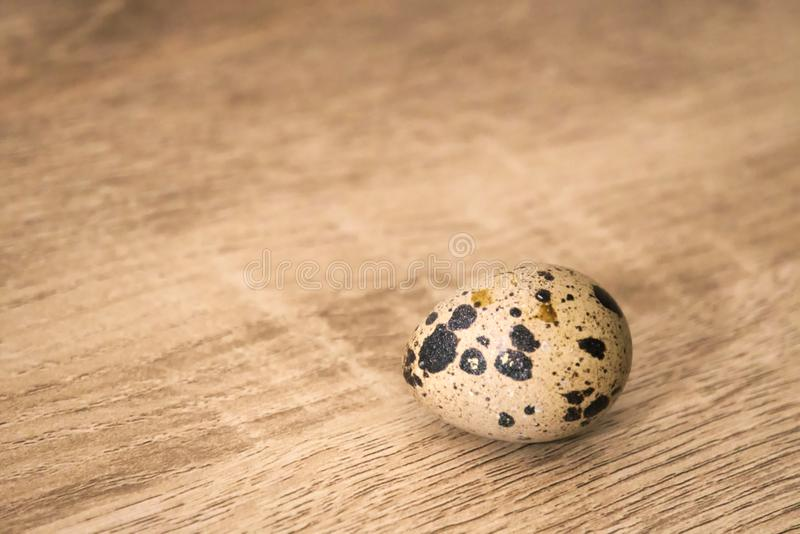 A single quail egg on a wooden board background. royalty free stock photos