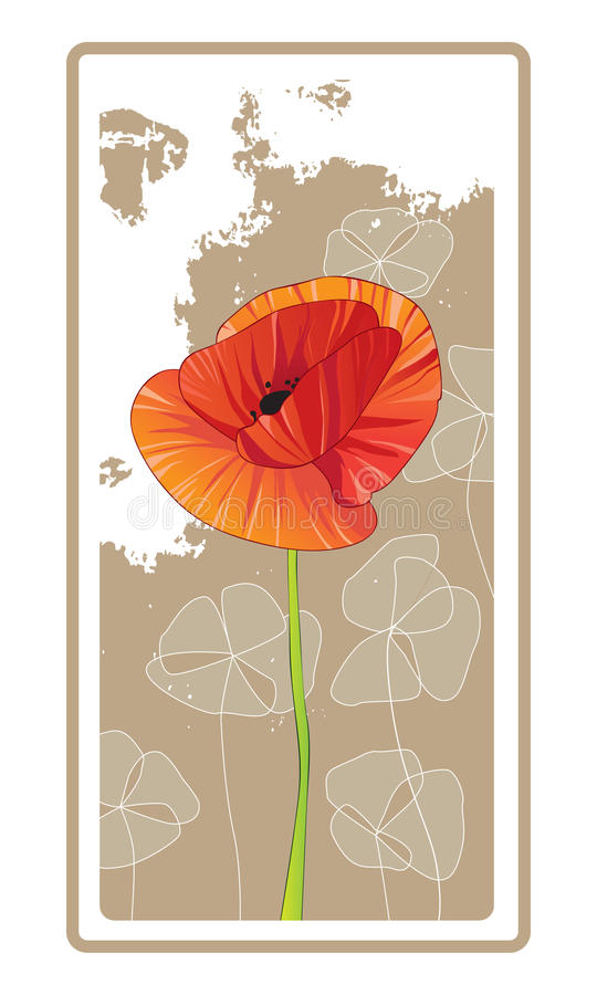 Single Red Orange Poppy. A single red orange poppy on a decorative tan background vector illustration