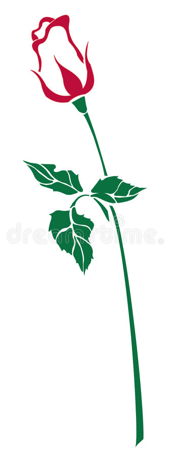 Download Single red rose stock vector. Image of beauty, isolated - 7448012