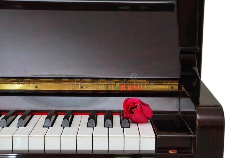 Download Single red rose on piano stock image. Image of melody - 14312127