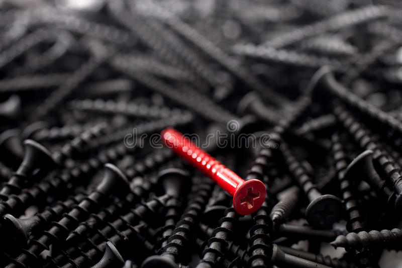 A single red against a number of black screws stock photography