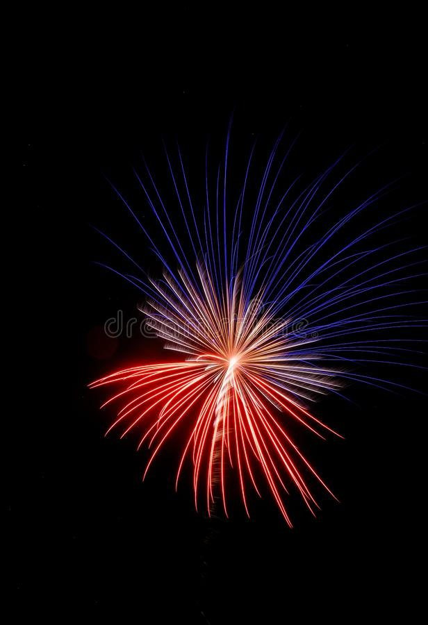 Single red, white, and blue firework against a black sky. Single large red, white, and blue firework against a black sky stock images