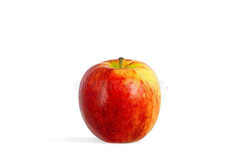 Download Single a red-yellow apple stock image. Image of isolated - 20383293