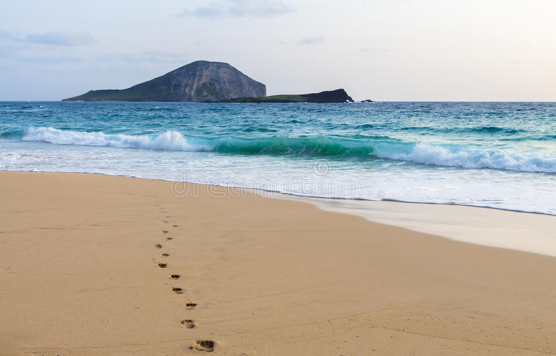 Footprints To The Ocean Royalty Free Stock Photography