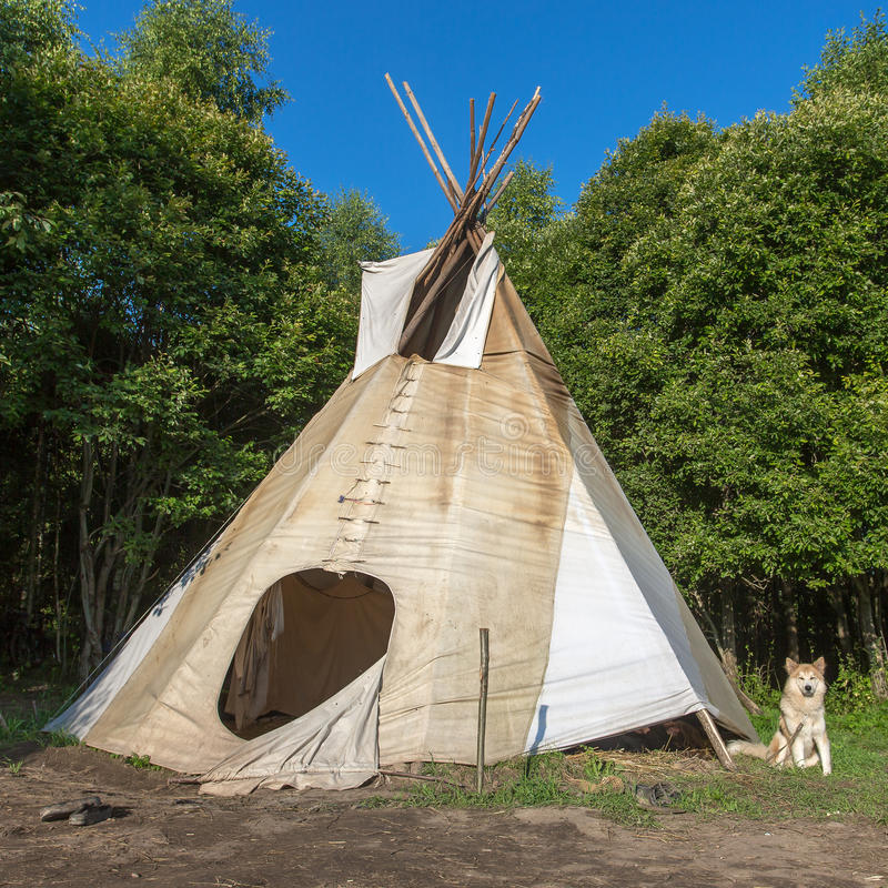 A single, solitary teepee in a forest. Tepees were traditional housing for Native Americans in Great Plains and other Western states royalty free stock images