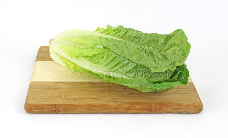 Single Stalk Romaine Lettuce. A single stalk of romaine lettuce on a cutting board royalty free stock photography