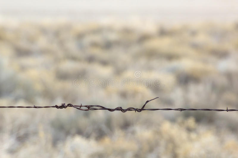 Single Strand Barb-Wire with Desert Background