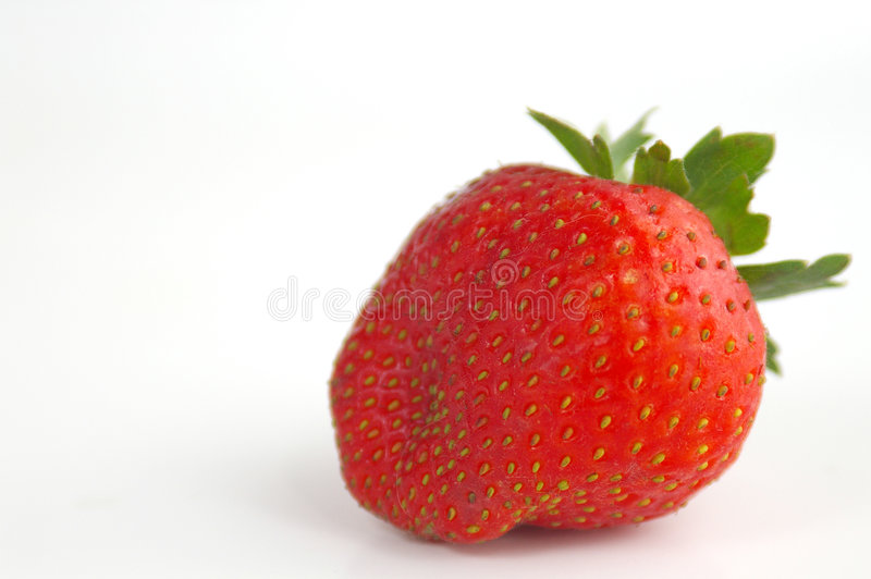 Single strawberry royalty free stock photography
