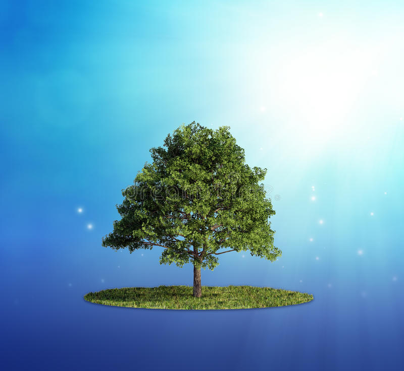 Download Single Tree Stock Photo - Image: 24942150