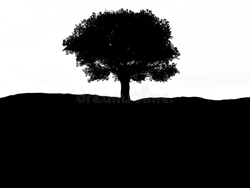 Download Single Tree 3 stock illustration. Image of silhouette - 2773681