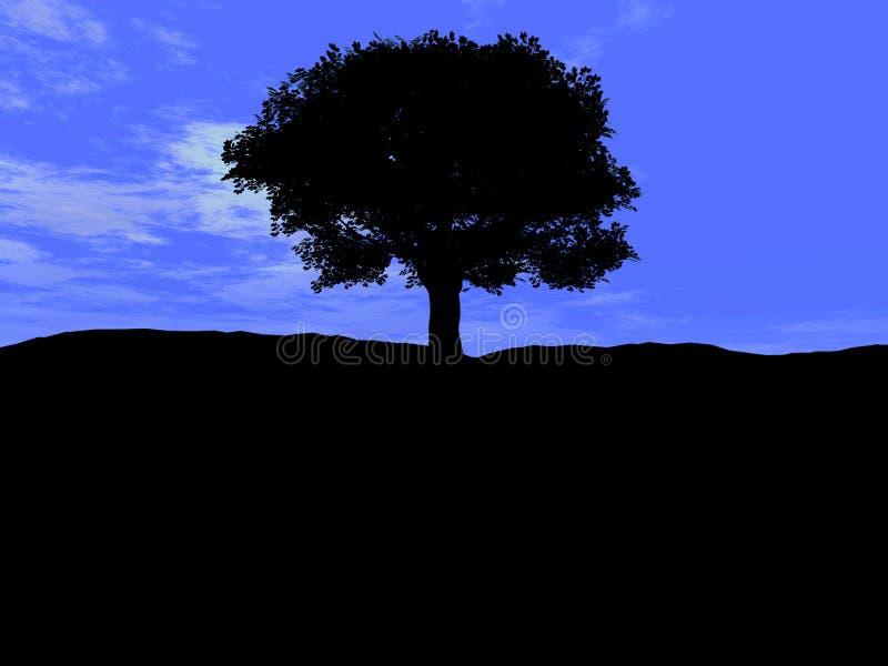 Single Tree 5