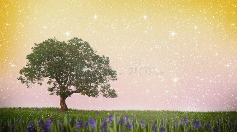 Single tree on a meadow. Sky full of stars - illustration stock illustration