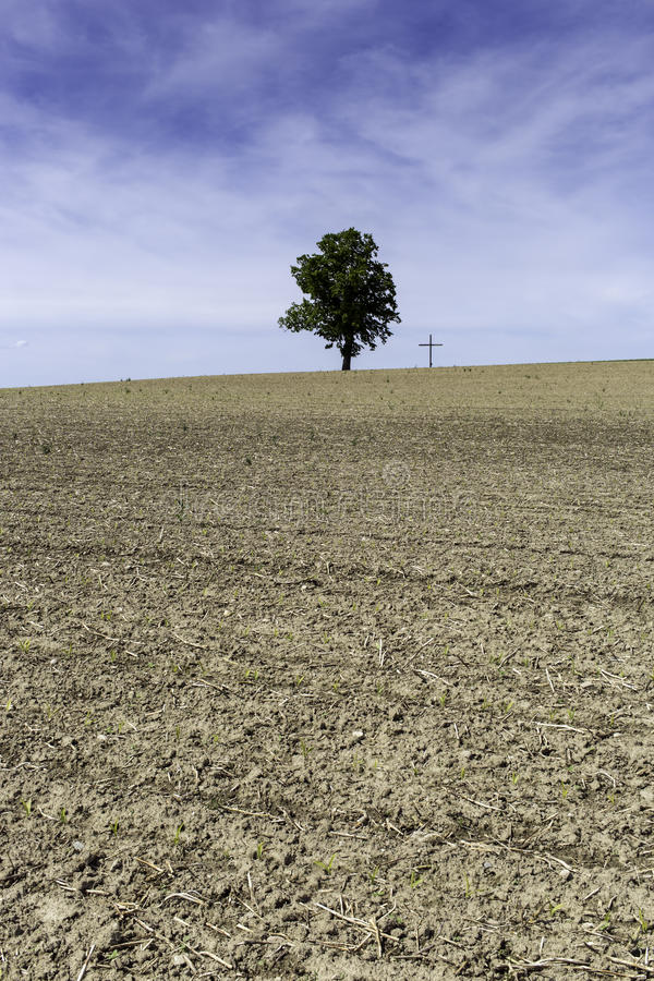 Single tree next to a cross. The silhouette of beautiful single tree on dry soil, next to a cross, the symbol of Christianity stock images